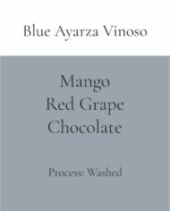 Blue Ayarza Vinoso