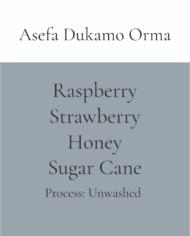 Asefa Dukamo Orma